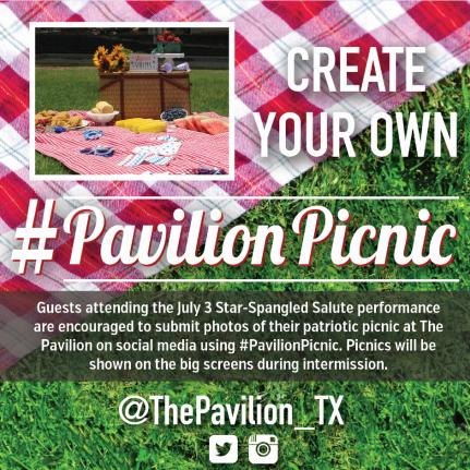 PavilionPicnic Ad